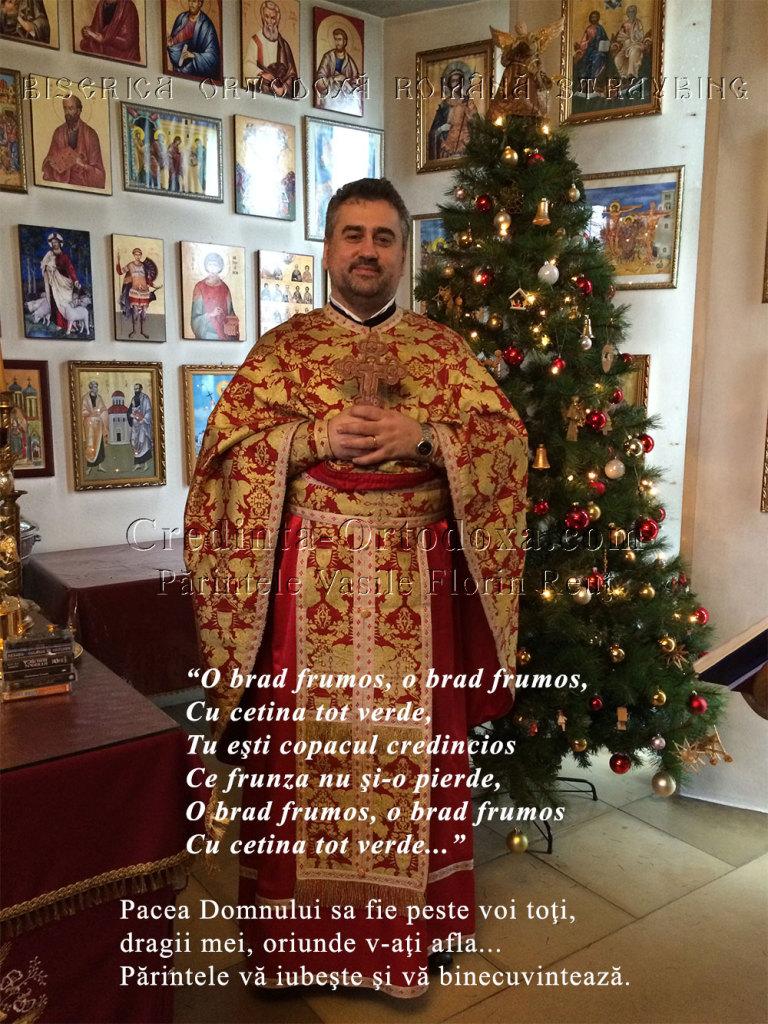 O brad frumos, o brad frumos, cu cetina tot verde... Bucurie si binecuvantare, dragi prieteni de pretutindeni * www.credinta-ortodoxa.com