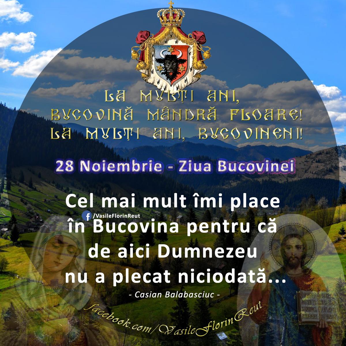 De ce îmi place Bucovina?